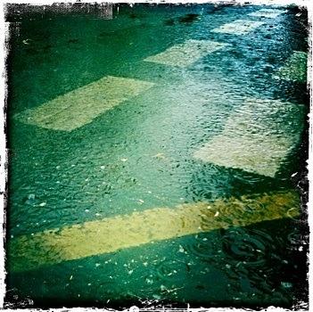 Today's rain...